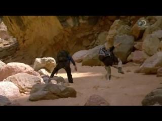 06 Звездное выживание с Беаром Гриллсом