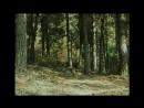 «Тропой бескорыстной любви» (1971) - драма, реж.  Агаси Бабаян HD 1080