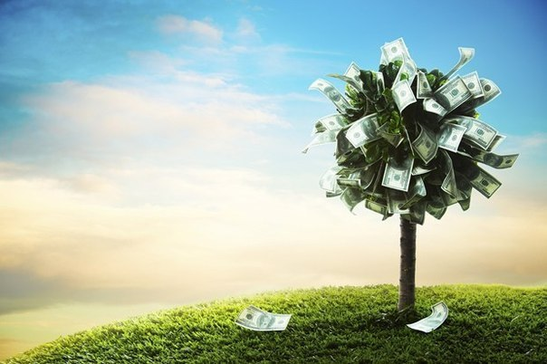 схема как заработать деньги на ставках