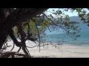 Джунгли: Волшебство другого мира / The Jungle: Magic Of Another World (2012)