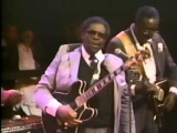 B.B. King, Stevie Ray Vaughan, Eric Clapton, Albert King, Phil Collins,...-  Why I Sing the Blues.