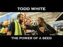 Todd White - The Power Seed (Shopping Testimonies)