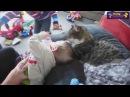 загадки приколы для детей видео приколы с детьми танцы спящие дети приколы