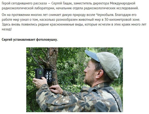 Фото №456260671 со страницы Валерии Андреевой