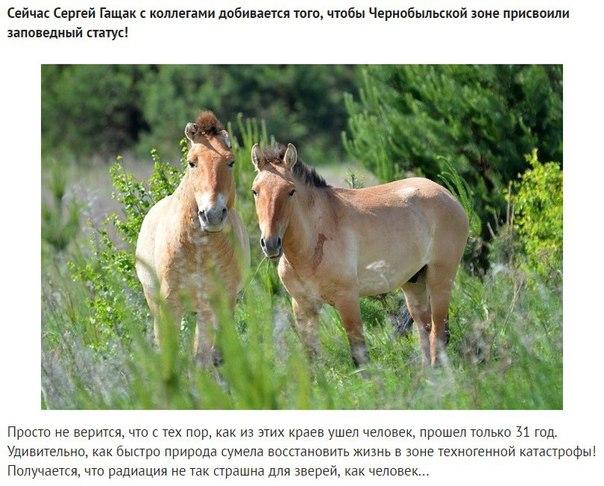 Фото №456260680 со страницы Валерии Андреевой