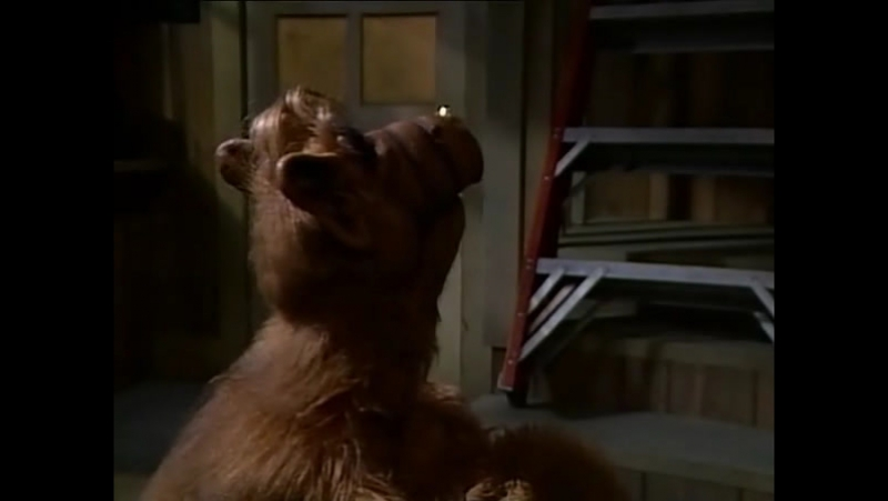 Alf Quote Season 1 Episode 1_Альф в гараже