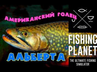 Fishing Planet 0.7.6 Уникальный Американский Голец на удочку. Альберта. Вайт Мус