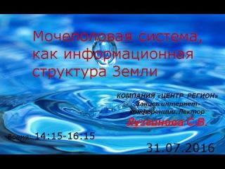 КФС №2. Мочеполовая система, как информационная структура Земли