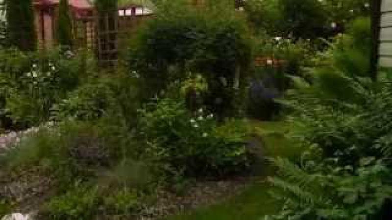 В саду у Юлии Тадеуш 19 июня 2015 года любительская съемка группа Зеленой стрела