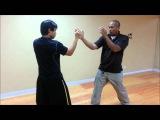 螳螂拳拍按 Mantis Boxing Guard Reset