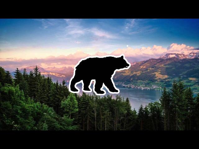 'Valley Solitude' | Chillstep Mix