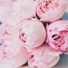 """Цветочная лавочка """"Only flowers"""""""