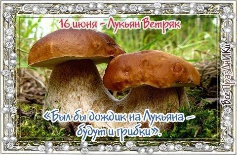 https://pp.userapi.com/c637330/v637330199/5f544/g9Q6IbNajO4.jpg