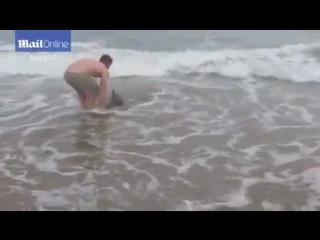 Человек и дельфин.