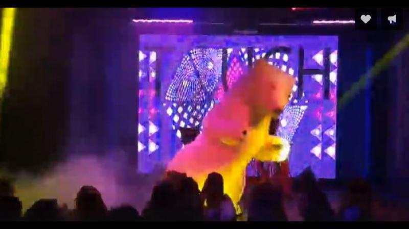 Белый Медведь разрывает танц пол на дискотеке в Арена