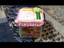 Коробочка сюрприз Magic Box