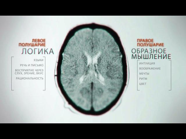 Тайны мозга. Фильм 4 nfqys vjpuf. abkmv 4