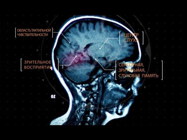 Тайны мозга. Фильм 3 nfqys vjpuf. abkmv 3