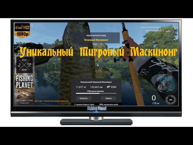 Fishing Planet 2017 Уникальный Тигровый Маскинонг Мичиган Сент Круа