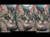 Cat Hair-Infused Tattoo with Roman Abrego &amp Makani Terror