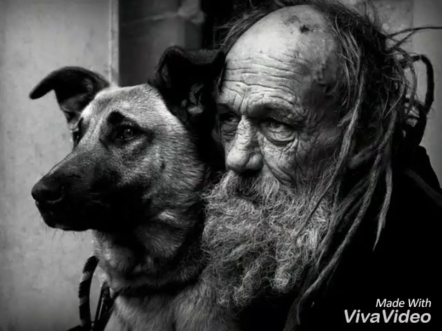 Пасечник Евгений - Герои последней войны (читает Сарина Гаспарян)