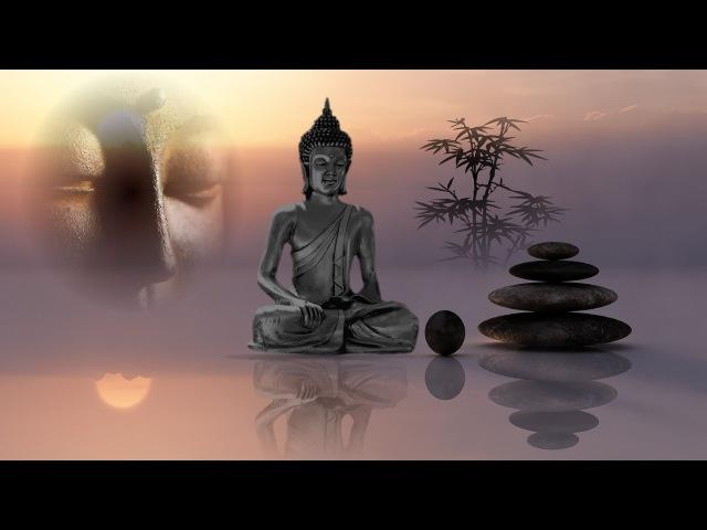 Heilende Frequenz 432 - Fühlbar entspannende und heilsame Wirkung auf den Menschen, öffnet das Herz