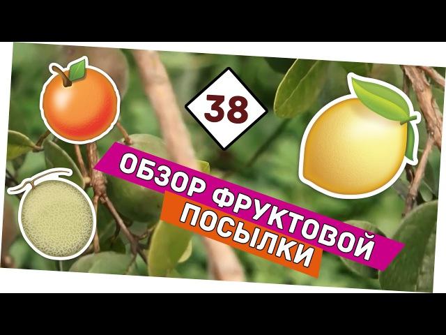 Обзор фруктов из Абхазии Андрей_Счастье сыроедение фрукторианство raw