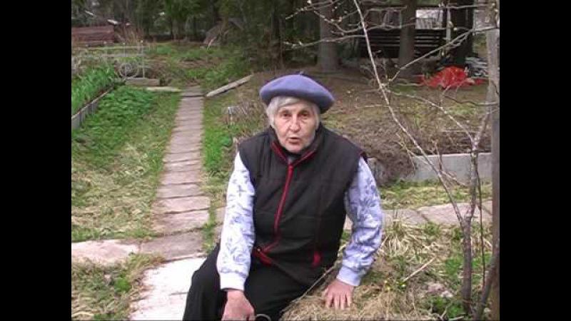 Экскурсия на участок Галины Александровны Кизимы