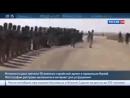 УЖАС... Исламисты выложили в Интернет фото расстрела 56 сирийских солдат
