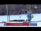 87-летняя жительница Темиртау приручила тысячи птиц