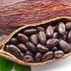 Какао Боб - Cacao Bob