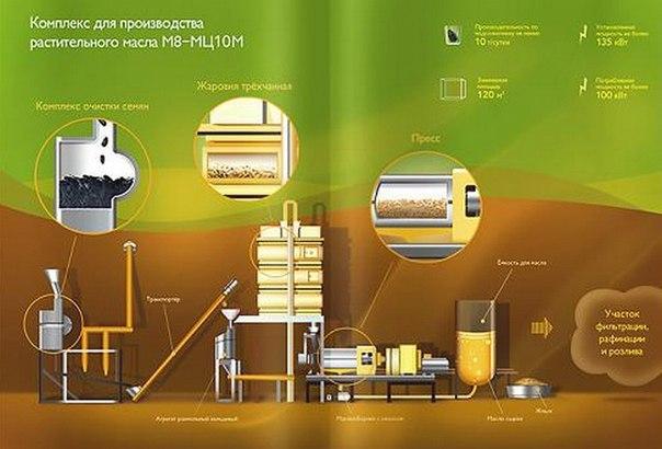 Производство подсолнечного масла -бизнес с высокой степенью стабильнос
