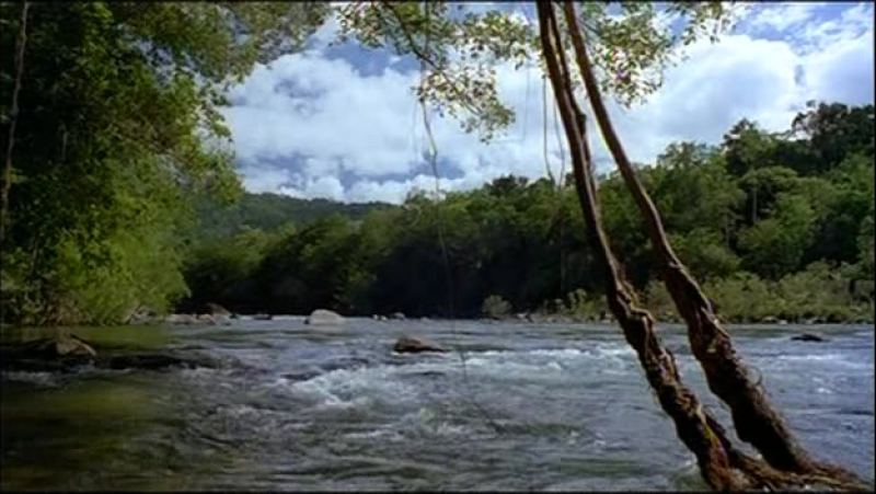 Амазония (Амазонка Питера Бенчли) / Amazon (Peter Benchley's Amazon) / 1999 s01e06