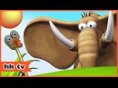 Gazoon | Cartoons for Children | The Hallucinating Ostrich | Funny Cartoons by HooplaKidz TV