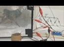 Bocina Casera Electrostática Como hacer