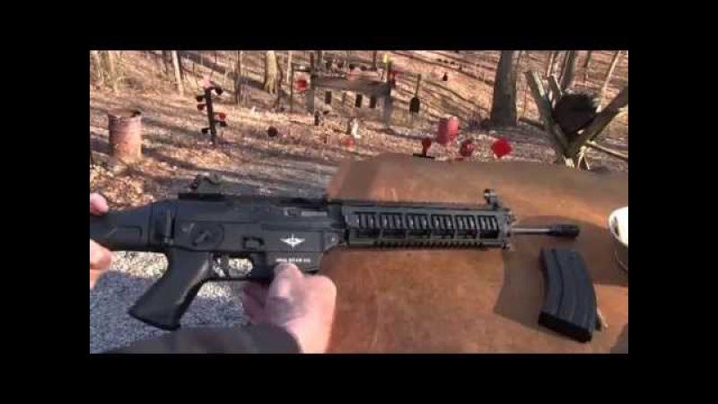 SIG 556 Classic Swat Model