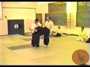 Kawahara Shihan Kick defence 1988
