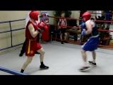 Бокс 21 мая 2017 Захаров - Серебренников