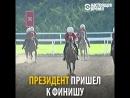 Туркменский президент выиграл скачки