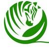 Зеленая зебра *пряжа, ткани, рукоделие* Гродно
