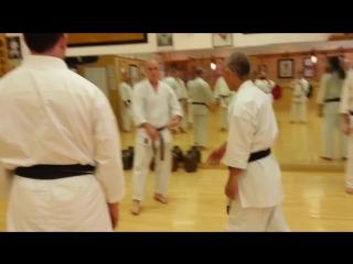 БИЕОTaira Bunkai NJ 2013 - Fast hand techniques (Saturday)