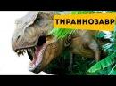 Интересные факты для детей про динозавров. Динозавр Тираннозавр Рекс