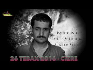 Cizre Türk Devlet Güçlerine Yapılan Fedai Eylem : 26 Ağustos 2016