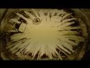 Очень красивая история любви 7.07.2017г. от Студии рисования песком SandLand Егорлыкская
