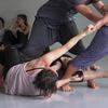 Лаборатория коллективного движения / Даша Седова (SMASH)