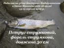 Рибалка на річці Бистриця Надвірнянська, м. Надвірна, с. Пасічна – 15-19.08.2016