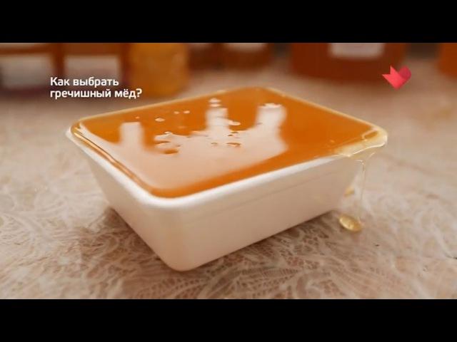 Доверяй, но проверяй: Как выбрать гречишный мед