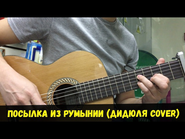 Посылка из Румынии (Дидюля cover)