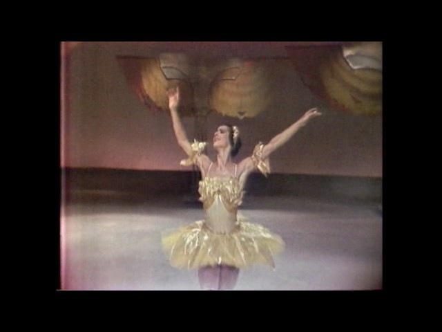 Nureyev, Lupe Serrano - Le Corsaire 1962