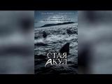 Стая акул (2008) | Shark Swarm